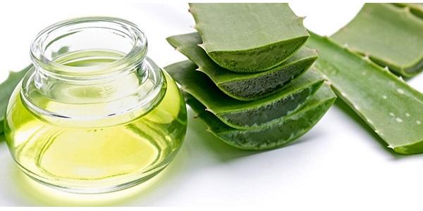 Photo of Aloevera yağı nasıl yapılır ve yan etkileri nelerdir?