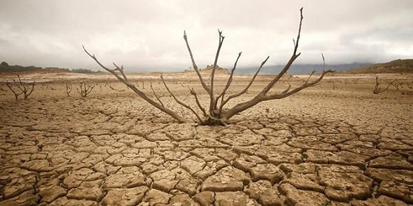 Photo of Güney Afrika için 6 ay içinde kıtlık tehlikesi var